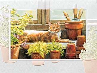In The Greenhouse | Cat themed thank you cards