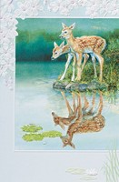 Fawns In Reflection (FRIN)