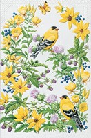 Goldfinch in Thistle (FRIN)