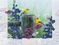 Goldfinch Garden (GWIN)