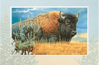 Monarch of the Plains | Buffalo blank greeting cards