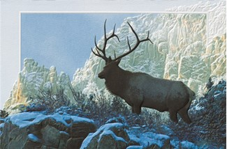 Top of the World | Elk on mountain blank greeting cards