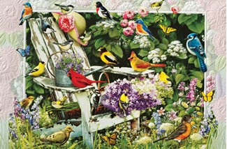 Garden Party | Songbird get well greeting cards