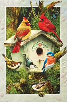 Heart of Pine | Birdhouse greeting cards