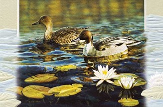 Afternoon at the Pond | Ducks embossed greeting cards