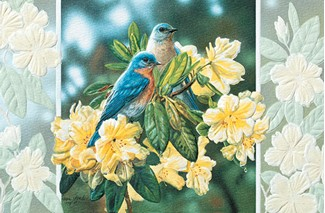 Bluebirds in rhododendron bluebird embossed greeting cards m4hsunfo