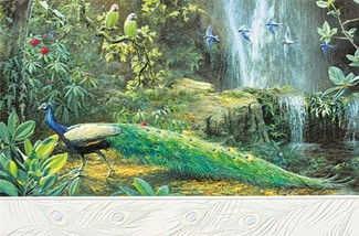 Enchanted Valley | Peacock inspirational greeting cards