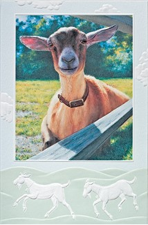 Hey Kid | Goat embossed greeting cards