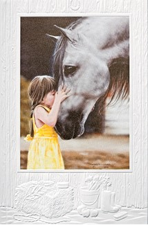 The Kiss | Horse greeting cards