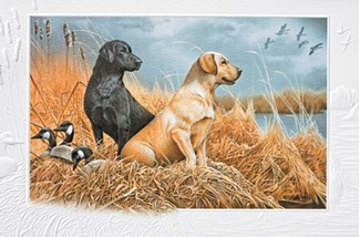 Friends in the Field | Hunting birthday greeting cards