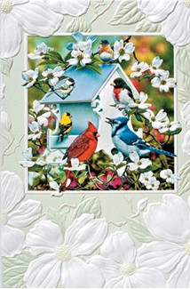 Backyard Birds | Songbird embossed cards