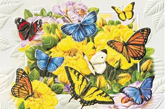 Butterfly Banquet | Embossed butterfly birthday greeting cards
