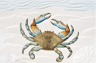 Blue Crab | Crustacean greeting cards