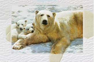 Mother of Pearls | Polar bear birthday greeting cards