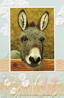 Que Pasa? | Embossed donkey greeting cards
