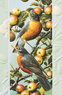 American Robins | Songbird birthday cards, Made in America