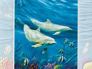 Dolphin Duo | Sealife anniversary wedding cards