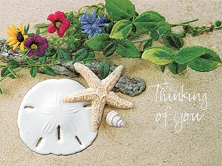 Ebb Tide | Friendship note cards
