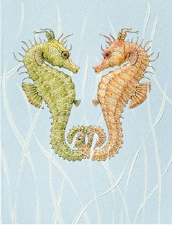 Seahorse Sweethears | Seahorse note cards