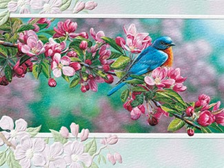 Garden Sapphire | Coping greeting cards