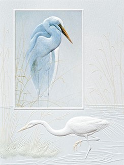 Solitary Egret | Sympathy note cards