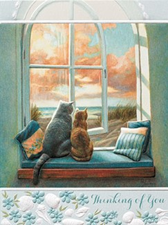 Coastal Comfort | Pet lover coping greeting cards