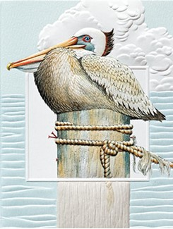 Pensive Pelican | Embossed birthday note cards, Made in the USA