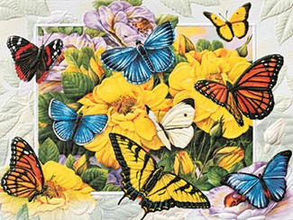Butterfly Menagerie | Butterfly birthday note cards