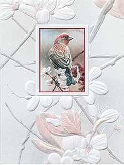Pretty Perch | Songbirds embossed blank note cards