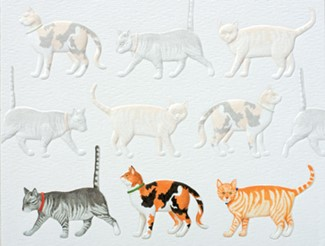 Feline Parade | Pet lover boxed note cards
