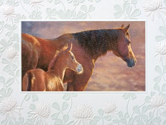 New Dawn | Horse lover note cards
