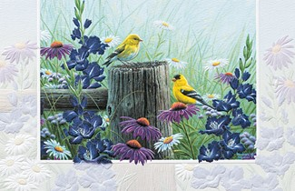 Goldfinch Meadow | Bird themed birthday greeting cards