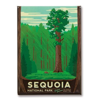 Sequoia Magnet| American Made Magnet
