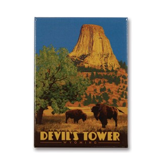 Devil's Tower, WY Magnet | Metal Magnet
