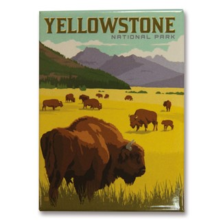 Yellowstone Bison Herd | Made in the USA