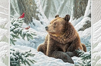 Snow Buddies | Wildlife themed boxed Christmas cards