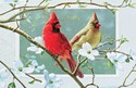 Cardinals In Dogwood