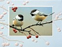 Bright Chickadees