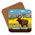 Grand Teton Elk Coaster