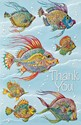 Thankful Fishes (TY) (Single)