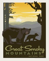 "Great Smoky Mama Bear & Cubs 8"" x 10"" Print"