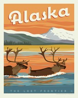 "AK Swimming Caribou 8""x10"" Print"