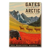 Gates of Arctic National Park Metal Magnet