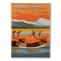 Kobuk Valley Metal Magnet