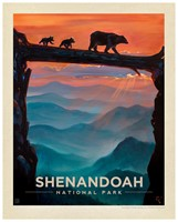 "Shenandoah Bear Crossing 8""x10"" Print"
