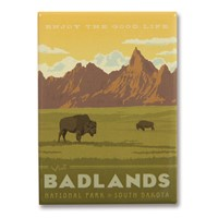 Badlands National Park Metal Magnet