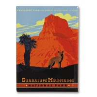 Guadalupe Mountains Metal Magnet