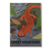 Great Smoky Salamander Metal Magnet
