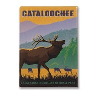 Great Smoky Cataloochee Elk Metal Magnet