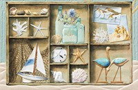 Coastal Shadowbox